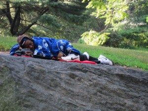homeless solutions needed in central park